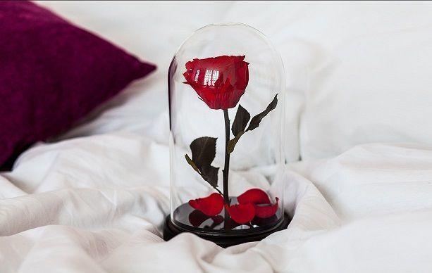 Цветок розы Premium в колбе из стекла