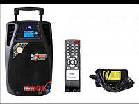 Акустика портативная Temeisheng  SL-08-01 смикрофонами и Bluetooth