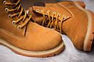 Зимние ботинки  на мехуTimberland 6 Premium Boot, рыжие (30661) размеры в наличии ► [  36 37 39 40  ], фото 6