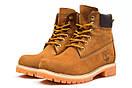Зимние ботинки  на мехуTimberland 6 Premium Boot, рыжие (30661) размеры в наличии ► [  36 37 39 40  ], фото 7