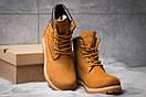 Зимние ботинки  на мехуTimberland 6 Premium Boot, рыжие (30651) размеры в наличии ► [  40 41  ], фото 3