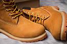 Зимние ботинки  на мехуTimberland 6 Premium Boot, рыжие (30651) размеры в наличии ► [  40 41  ], фото 6