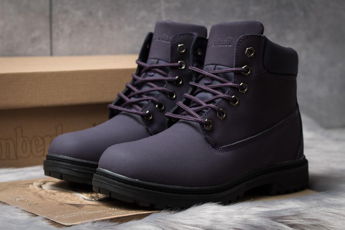 Зимние ботинки  на мехуTimberland Premium Boot, фиолетовые (30736) размеры в наличии ► [  38 40  ]