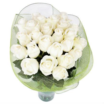 Ніжний букет білих троянд «Біла Мрія - 23 троянди»