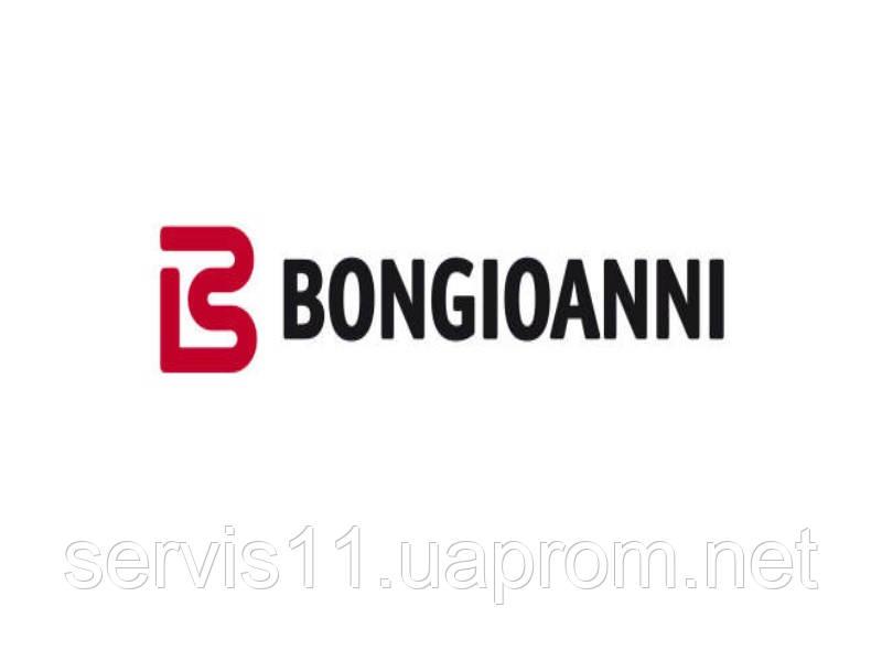 Инструкции газовых котлов Bongioanni (Бонжуани)