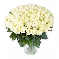 Роскошный букет из белых роз «101 белая роза», фото 1