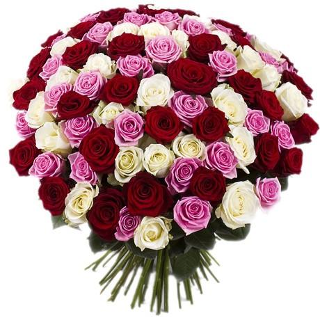 Сколько стоит цветок лилия