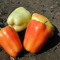 Насіння перцю солодкого Фламінго F1 (50 гр)