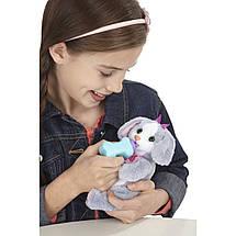 Новорожденный зверюшки Hasbro, фото 2