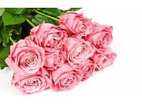 Букет долгосвежих роз Розовый Кварц 228-1841239