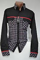 Рубашка приталенная SIGMAN (размеры S, L, XL, XXL)