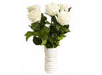 Букет долгосвежих роз Белый Бриллиант 228-1841236