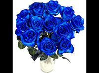 Букет долгосвежих роз Синий Сапфир 228-1841240