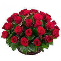 Впечатляющая корзина роз «Дыхание любви - 35 роз»
