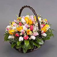 Корзина разноцветных тюльпанов «Краски весны»