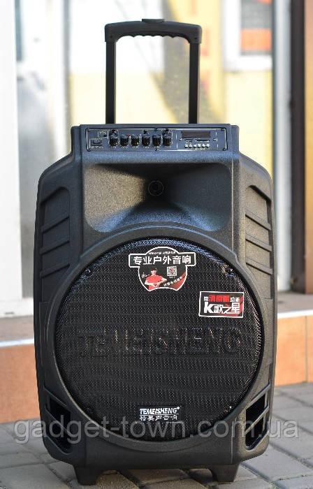 Колонка Temeisheng SL 15-08 з акумулятором, 15 дюймів, 2 мікрофона, MP3, Bluetooth, USB, SD, 150W