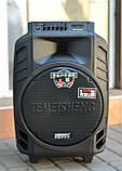 Колонка Temeisheng SL 15-08 з акумулятором, 15 дюймів, 2 мікрофона, MP3, Bluetooth, USB, SD, 150W, фото 5