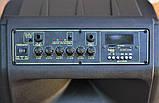 Колонка Temeisheng SL 15-08 з акумулятором, 15 дюймів, 2 мікрофона, MP3, Bluetooth, USB, SD, 150W, фото 6