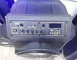 Колонка Temeisheng SL 15-08 з акумулятором, 15 дюймів, 2 мікрофона, MP3, Bluetooth, USB, SD, 150W, фото 8