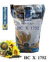 Семена подсолнуха НСХ 1752 (под Гранстар)