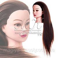 Учебная голова-манекен: на что обратить внимание начинающему парикмахеру