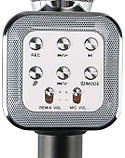 Беспроводной Караоке Микрофон с динамиком  Wster WS-1818 (USB, microSD, AUX, FM, Bluetooth), фото 4