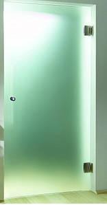 Душові двері матові Door 80см
