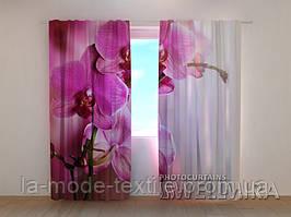 Фотошторы Пурпурные орхидеи