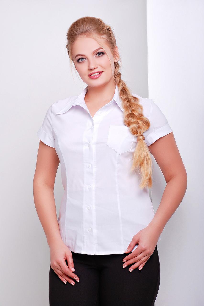 Женская офисная белая блузка рубашка с коротким рукавом и кармашком большие размеры Марта-Б к/р