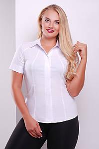 Женская белая приталенная рубашка с коротким рукавом для офиса большие размеры Норма-Б к/р