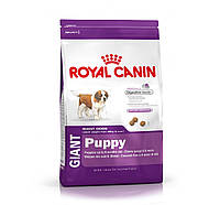 Royal Canin dog GIANT PUPPY 4кг
