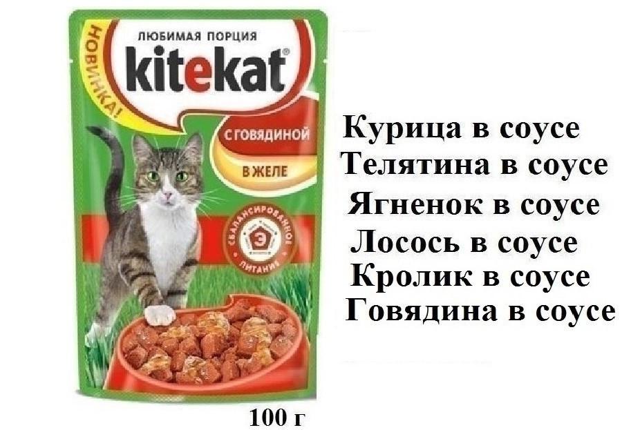 Китикет Пауч 100 г