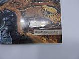 Евреи в Римской Империи в эпоху Талмуда (период Мишны – с 70 по 220 гг. н.э.) (б/у)., фото 5