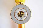 Портативный караоке-микрофон WS668 Gold с подсветкой. Bluetooth караоке микрофон, фото 2