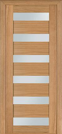 Шпонированные межкомнатные двери  Терминус №136, фото 2
