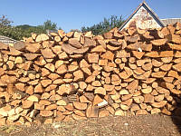 Перевозка дров, фото 1