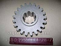 Колесо зубчатое 150.41.223-7А редуктора ВОМ,тракторов Т150,Т151