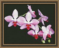 Набор для вышивки крестиком Ветка орхидеи Ю 0116