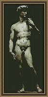 Набор для вышивки крестом Давид Ю 0109