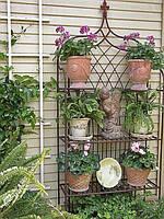 Горшки и кашпо для растений, грядки