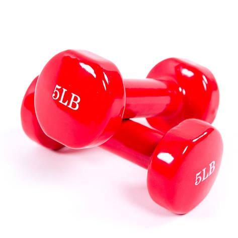 Гантели для фитнеса по 2,3 кг ZCN5L, фото 2