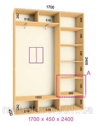 Шкаф-купе 2 двери Стандарт 170х45 h-240, ТМ Феникс, фото 2