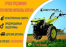 Мотоблок Кентавр МБ 40-1С /500 (5 л.с.), фото 3