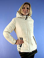 Куртка женская весенняя Deify 020 (размер 48-58) Deify, Symonder, Peercat, Decently, Kapre, Covily, Mishele