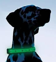 USB-ошейники светящиеся для собак