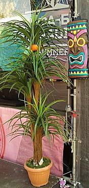 Аренда искусственной пальмы, искусственные цветы