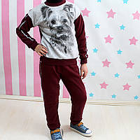 Костюм спортивный 3-х нитка Йорк кофта штаны Бордо размер 36,38,40 123943c0446