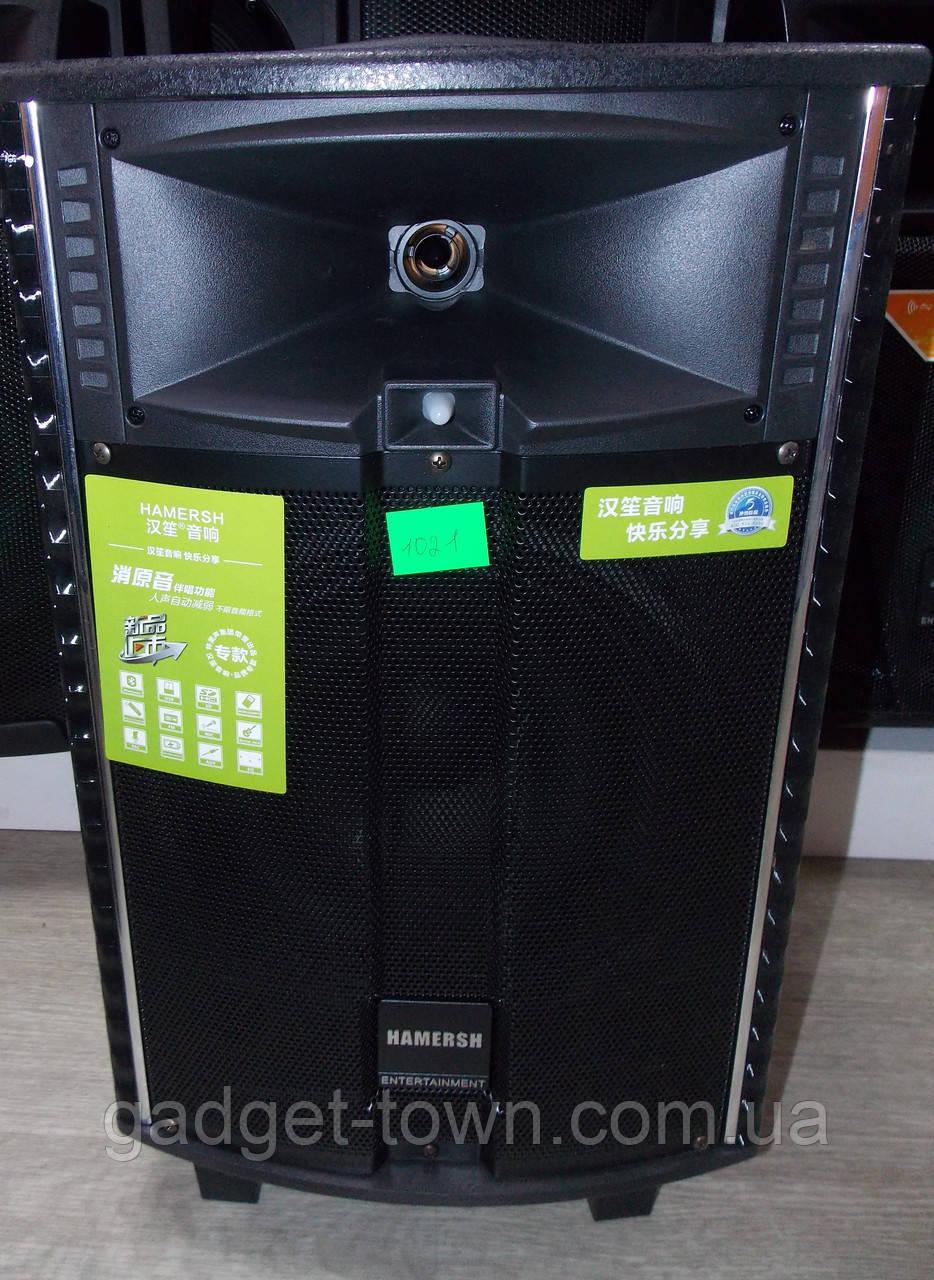 Акумуляторна колонка Temeisheng QX 1021 з підсилювачем