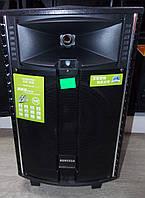 Аккумуляторная колонка с усилителем Temeisheng QX 1021 Комбик