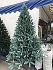 Ель Канадская Литая голубая 150 см , фото 2
